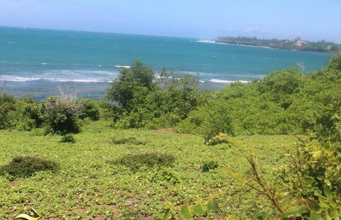 Beach Plot for Sale at Madeteni, Kilifi