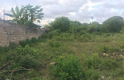 3/4 Of An Acre 3rd Row (Diani South Coast) Behind Winner Chapel